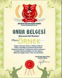 Şehit aileleri ve gazilere elektronik onur belgesi