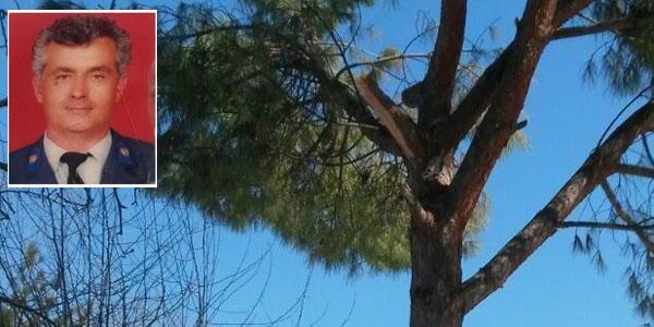 Ağaçtan düşen emekli astsubay öldü